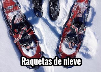 Raquetas de nieve - Portada